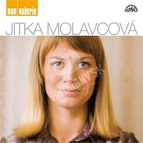 Jitka Molavcová - Pop Galerie